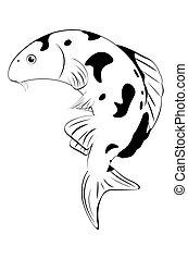 koi, hvid fisk, sort