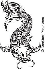 koi karpe, fish