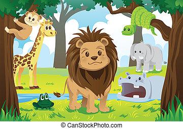 kongerige, dyr