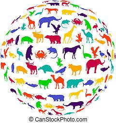 kongerige, potpourri, dyr