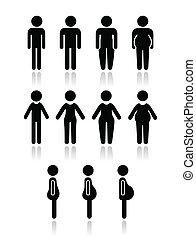 krop, kvinder, mand, type, iconerne