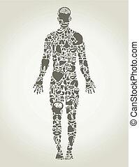 krop, person, dele