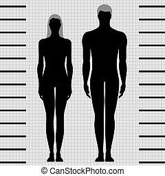 kvindelig, mandlig, skabeloner, krop