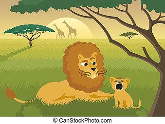 løver, vild
