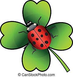 ladybug, vektor, kløver
