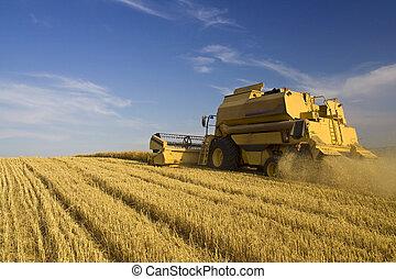 landbrug, -, hægte