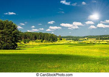 landligt landskab