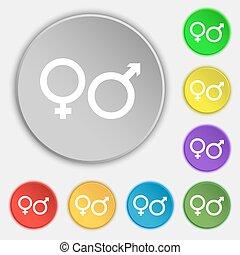 lejlighed, buttons., tegn., vektor, fem, kvindelig, mandligt symbol, ikon