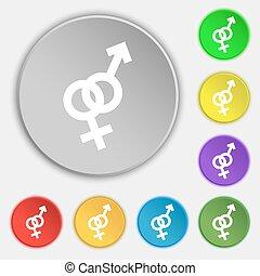 lejlighed, buttons., tegn., vektor, otte, kvindelig, mandligt symbol, ikon