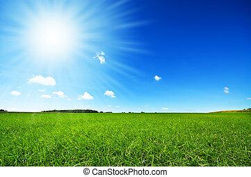 lys blå, frisk, himmel, græs, grønne