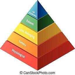 maslow, fem, niveauer, pyramide, hierarki, behøve