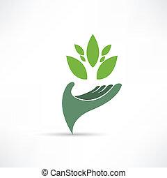miljø, økologiske, ikon
