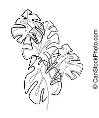 monstera., kontur, illustration, bush., delicate, hvid, foliage., print., blade, komposition, monoline, tropisk, sort, trendy