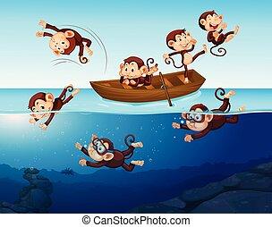 morskab, abe, hav, har