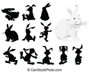 movement., illustration, silhuetter, vektor, sort, kanin