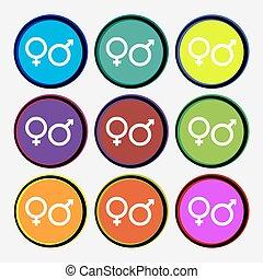 multi, buttons., farvet, tegn., vektor, ni, kvindelig, mandlig, omkring, ikon