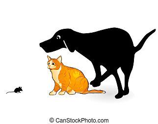 mus, hund, kat