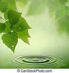naturlig, abstrakt, baggrunde, dew., formiddag, konstruktion, din