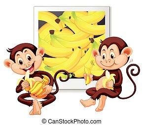 nydelse, bananer, aber, to