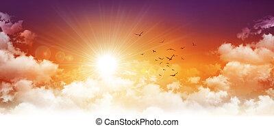 panoramiske, solnedgang