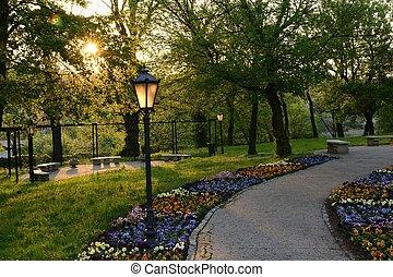 polen, grønne, parker