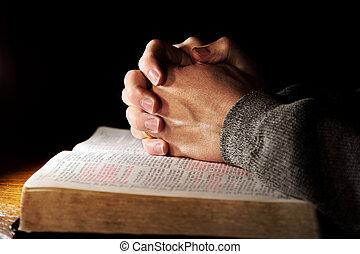 praying hænder, hen, hellig bibel