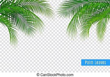 realistiske, blade, tropisk, ramme