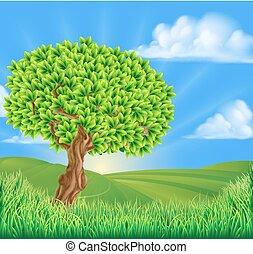 rulle landskab, træ, bakkerne, baggrund
