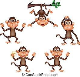 sæt, cartoon, samling, abe