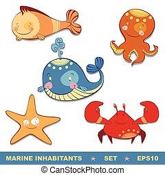 sæt, dyr, hav