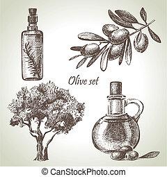 sæt, hånd, stram, oliven