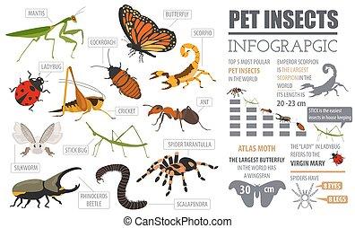sæt, insekter, hus, infographic, edderkopper, firmanavnet, biller, yndling, oprett, isoleret, anden, yndlinger, lejlighed, omkring, bugs, white., egen, ikon, fortsætte, collection., pinde, avler