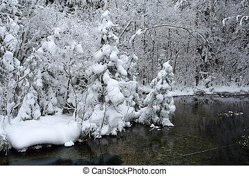 sceneri, frosty, dag, vinter