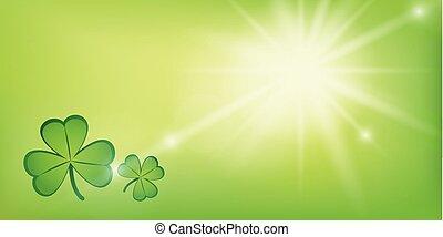 shamrock, kløver, solfyldt, grøn baggrund