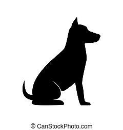 silhuet, hund, his
