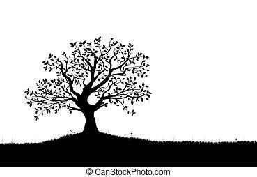 silhuet, vektor, vectorial, træ