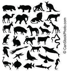 silhuetter, animals3, samling