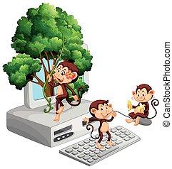 skærm, computer, nydelse, spille, aber