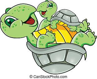 skildpadde, baby