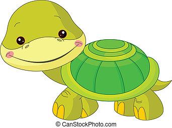 skildpadde, morskab, zoo.