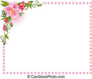 smukke, baggrund, orkidé