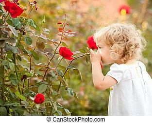 smukke, rose, barn, lugte