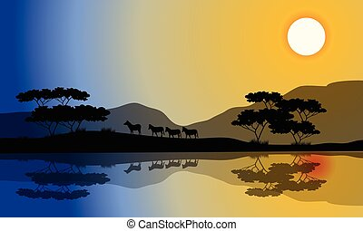 smukke, silhuet, zebra, riverbank