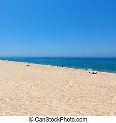 smukke, tropical strand, bathers