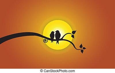 sol, aftenen, himmel, elsk fugle, appelsin