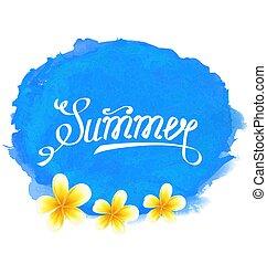 sommer, frangipani, typographic, tekst, etikette, blomster