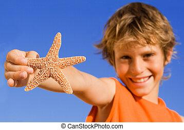 sommer, indstille, starfish, barn