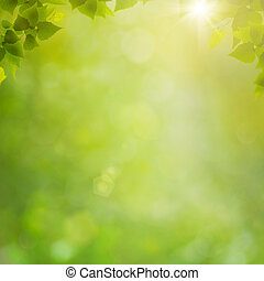 sommer, naturlig, abstrakt, baggrunde, bokeh, skov, løvværk, frisk