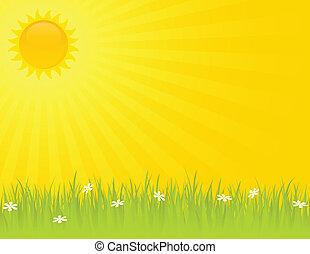 sommer, solfyldt dag
