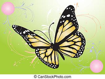 sommerfugl, image, vektor